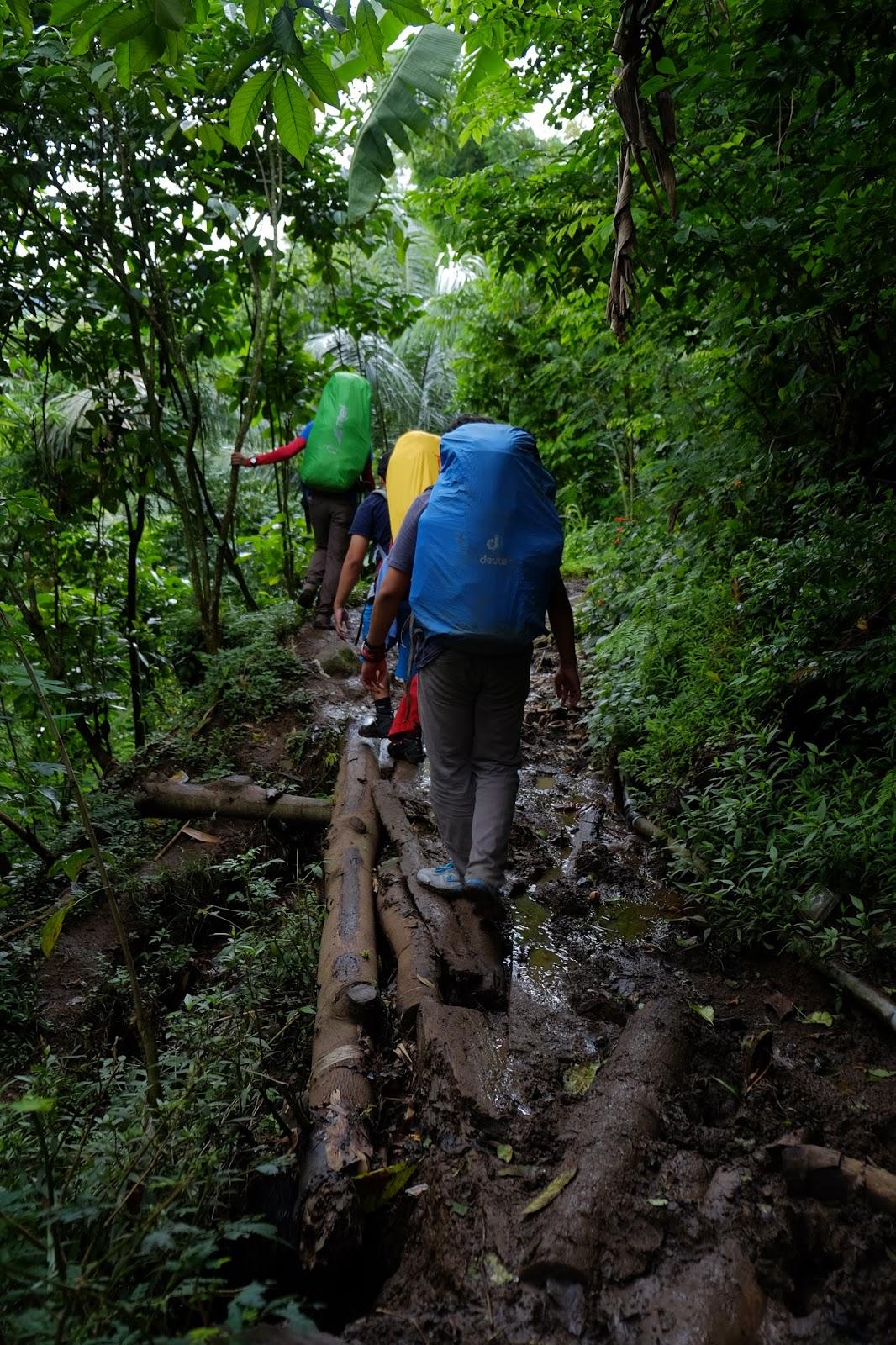 Berkenalan Dengan Argopuro Trek Terpanjang Se Jawa Www Ardiyanta Com