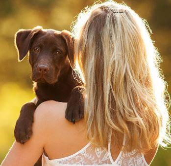 5 طرق لتعلم حب كلبك