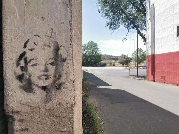 Stencil Art in Albury