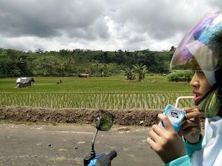 Curug Ciherang Jonggol Bogor