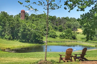 Scenic outdoor view at Slater Run Vineyards