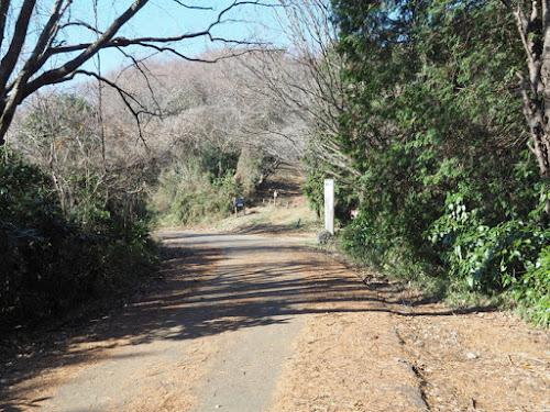 ハイキングコースは舗装道路を横断