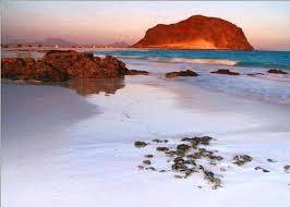 جزيرة عش الغراب