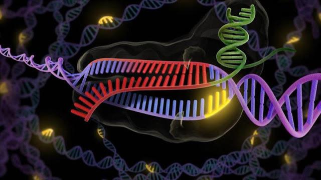 Científicos revelan cómo cuerpo detecta primeros signos de cáncer