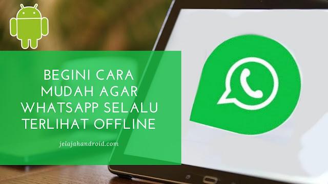 Begini Cara Mudah Agar WhatsApp Selalu Terlihat Offline