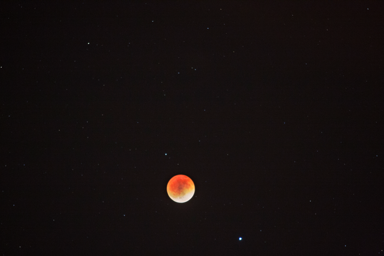 My Husband's Blood Moon