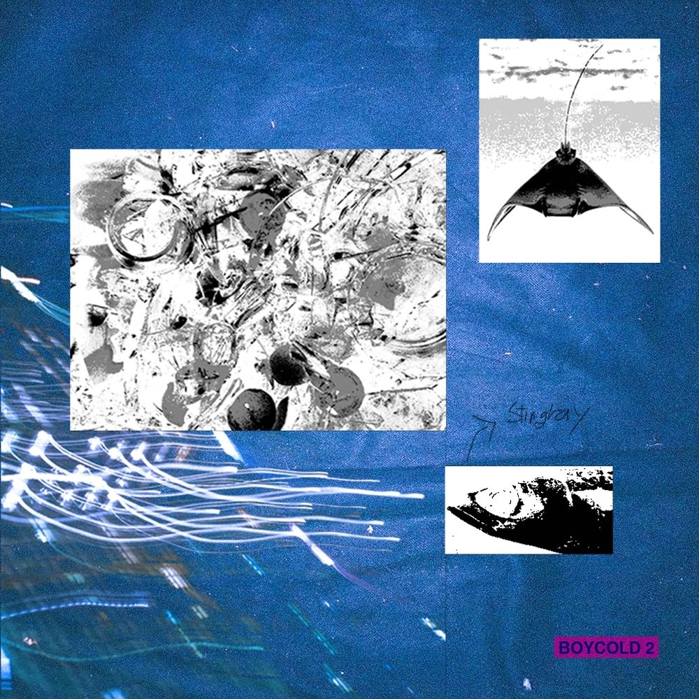 VINXEN – BOYCOLD 2 – EP