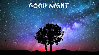 good night Wallpaper with tree