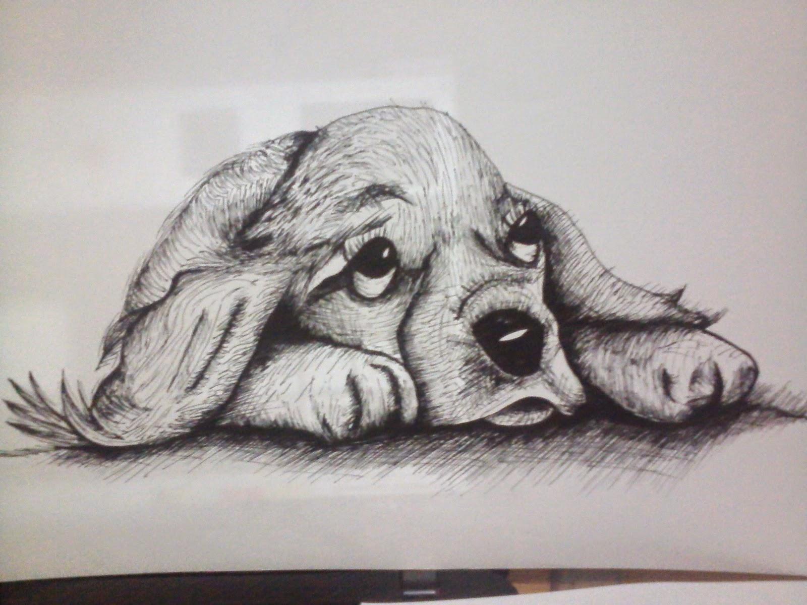The Gallery For --> Dibujos A Lapiz De Animales Salvajes