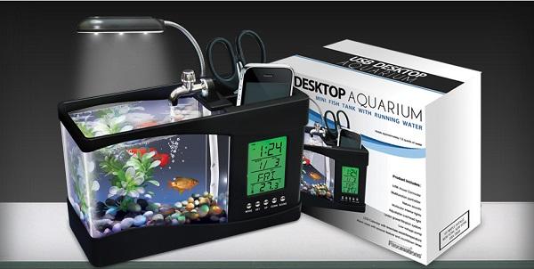 Aquarium Mini dengan USB - Budidaya Ikan
