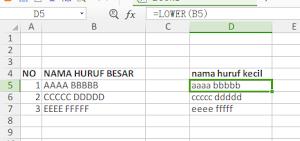 Mengubah Huruf Besar  Menjadi Huruf Kecil di Excel