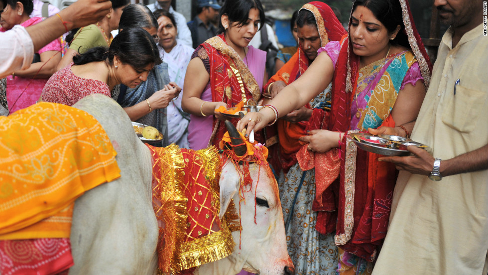 Millions of Hindus revere and worship cows