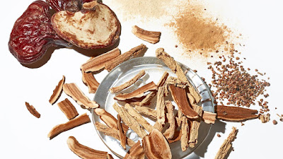 Mushroom Skincare : Fungi Fad or Lasting Trend?