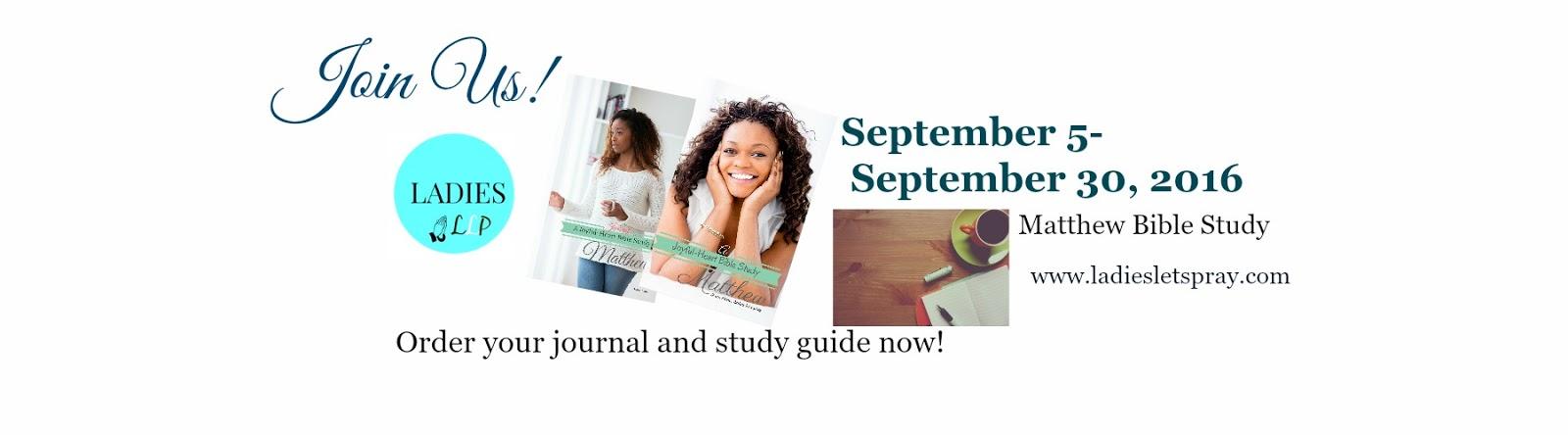 Amazon.com: book of matthew study guide