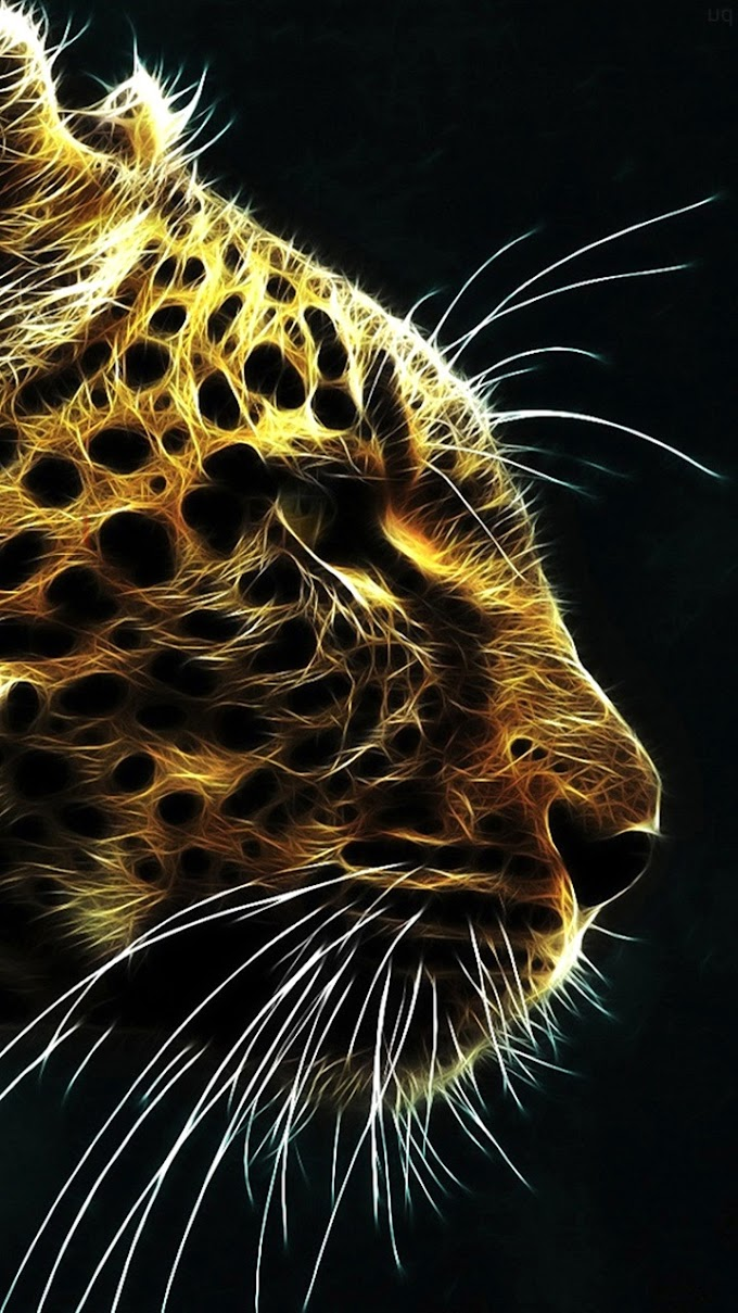Download free 4k Wallpapers of Tigers