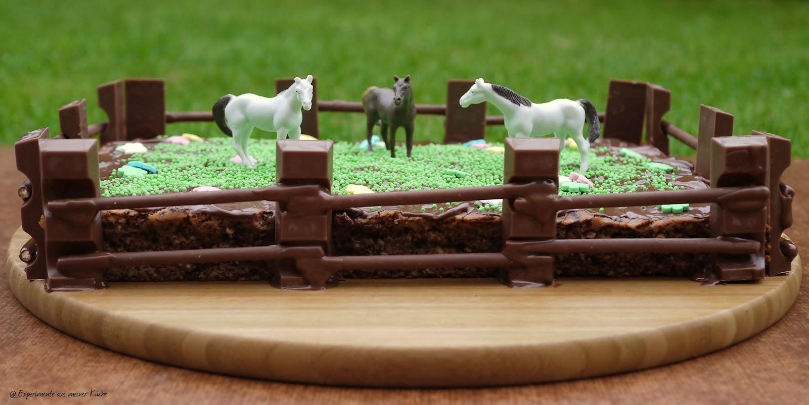 Experimente Aus Meiner Kuche Kindergeburtstag 1 Pferdemottoparty