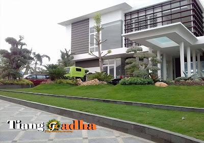 Jasa Tukang Taman Surabaya