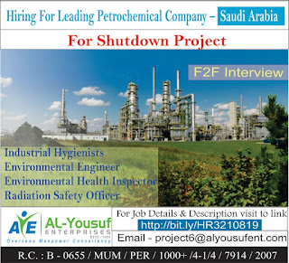 Leading Petrochemical Shutdown Project