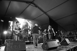 Foxapet au festival PAM 2016
