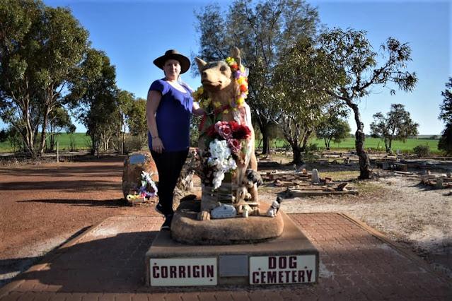 BIG Brown Dog | Dog Cemetery Corrigin