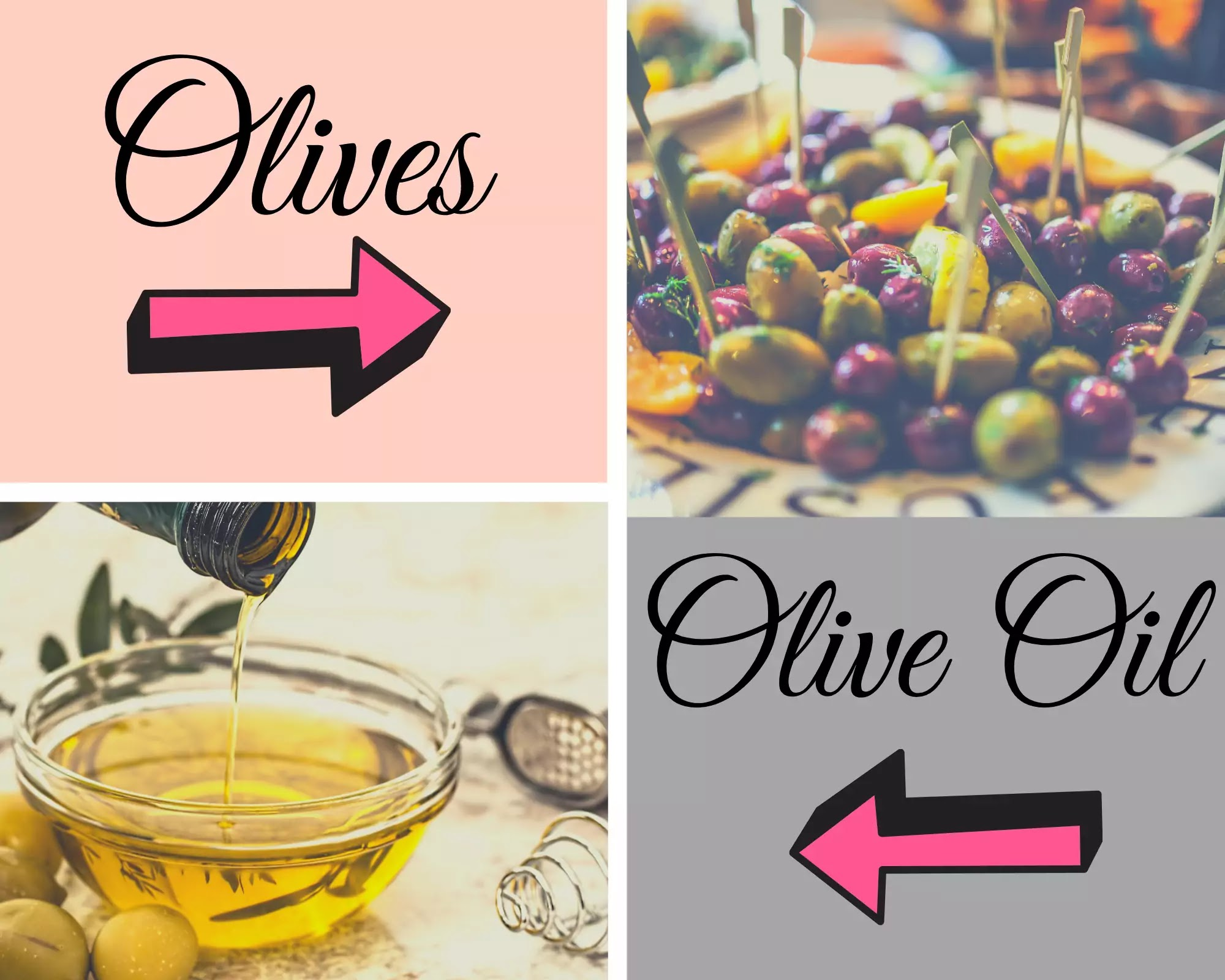 Olives and olive oil - benefits of olive oil