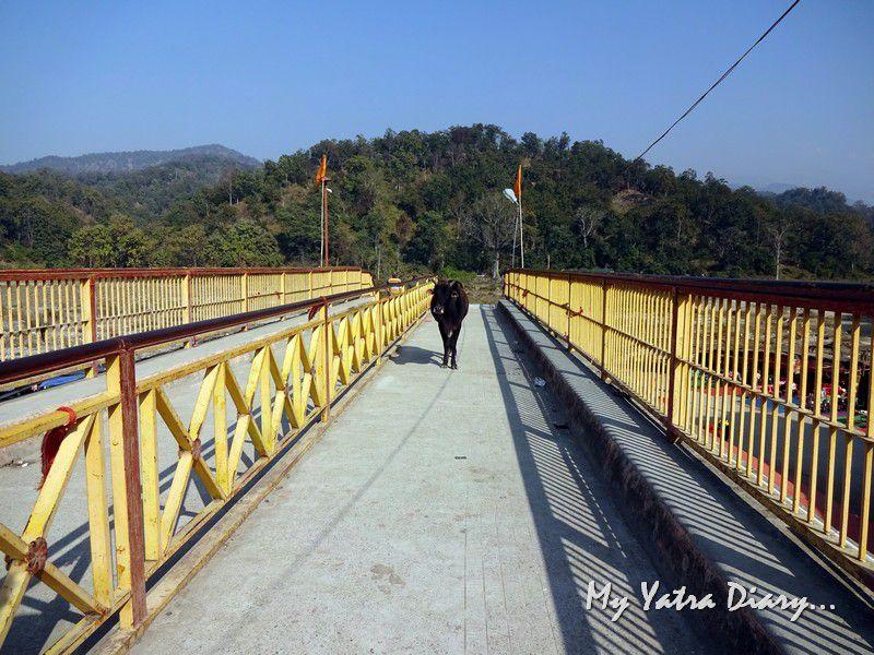 Bridge to the Garjiya Devi Shakti Temple Uttarakhand