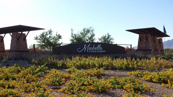 Marbella Vineyards New Homes For Gilbert 85298 By Shea