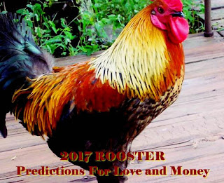 2017 ROOSTER Predictions For Love and Money