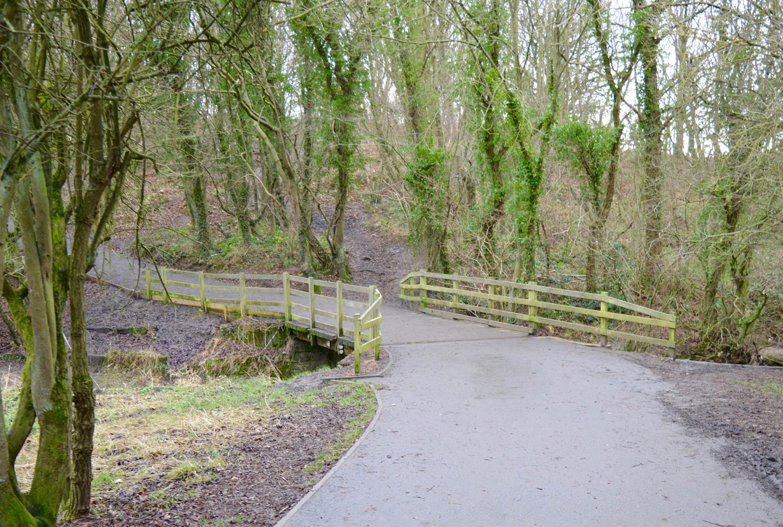 Our Visit to Plessey Woods - A FREE day out in Northumberland. It was very muddy and the perfect chance for Harry to put his GORE-TEX shoes through their paces - foot bridge over the river Blyth