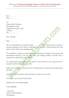 apology letter for late reply email sample