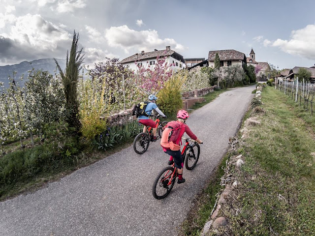 E-Bike MTB-Tour Kalterer See Bozen Monte Toval, Pfattner Steig