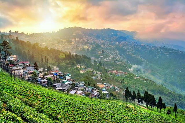 Darjeeling town and tea garden
