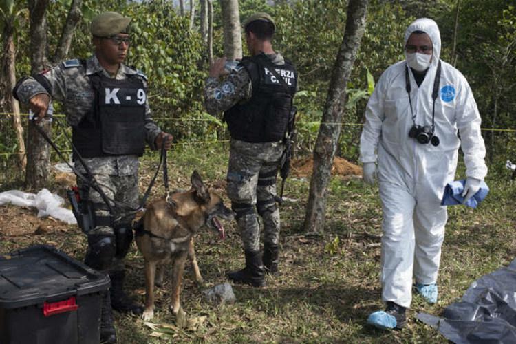 La otra fosa clandestina de Veracruz: 10 mil restos humanos en un rancho y sólo 4 identificados