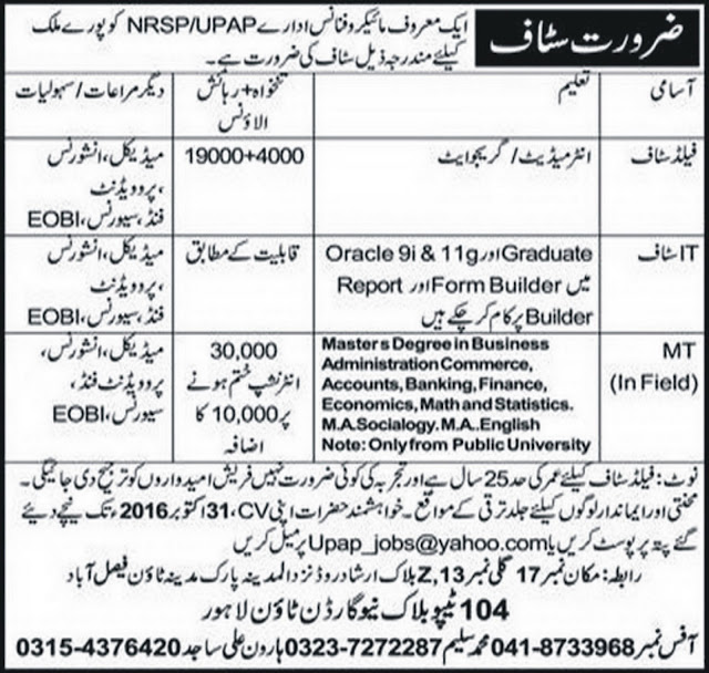 NRSP UPAP Jobs in Paksitan
