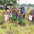 தைபூசம் புதிர் எடுக்கும் சிறப்பு பூஜை நிகழ்வு (Video & photos)
