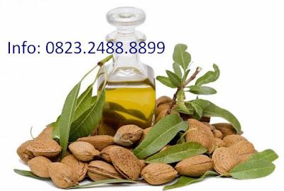 Sweet Almond Oil sebagai Minyak Herbal Sehat