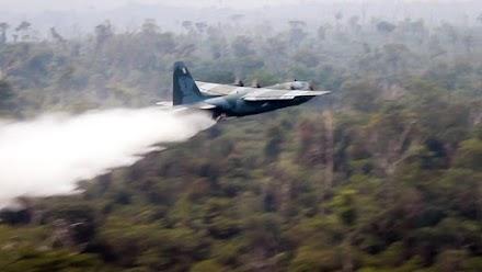 Το τροπικό δάσος του Αμαζονίου εξακολουθεί να φλέγεται, παρά την κινητοποίηση του στρατού και τις υποσχέσεις της G7