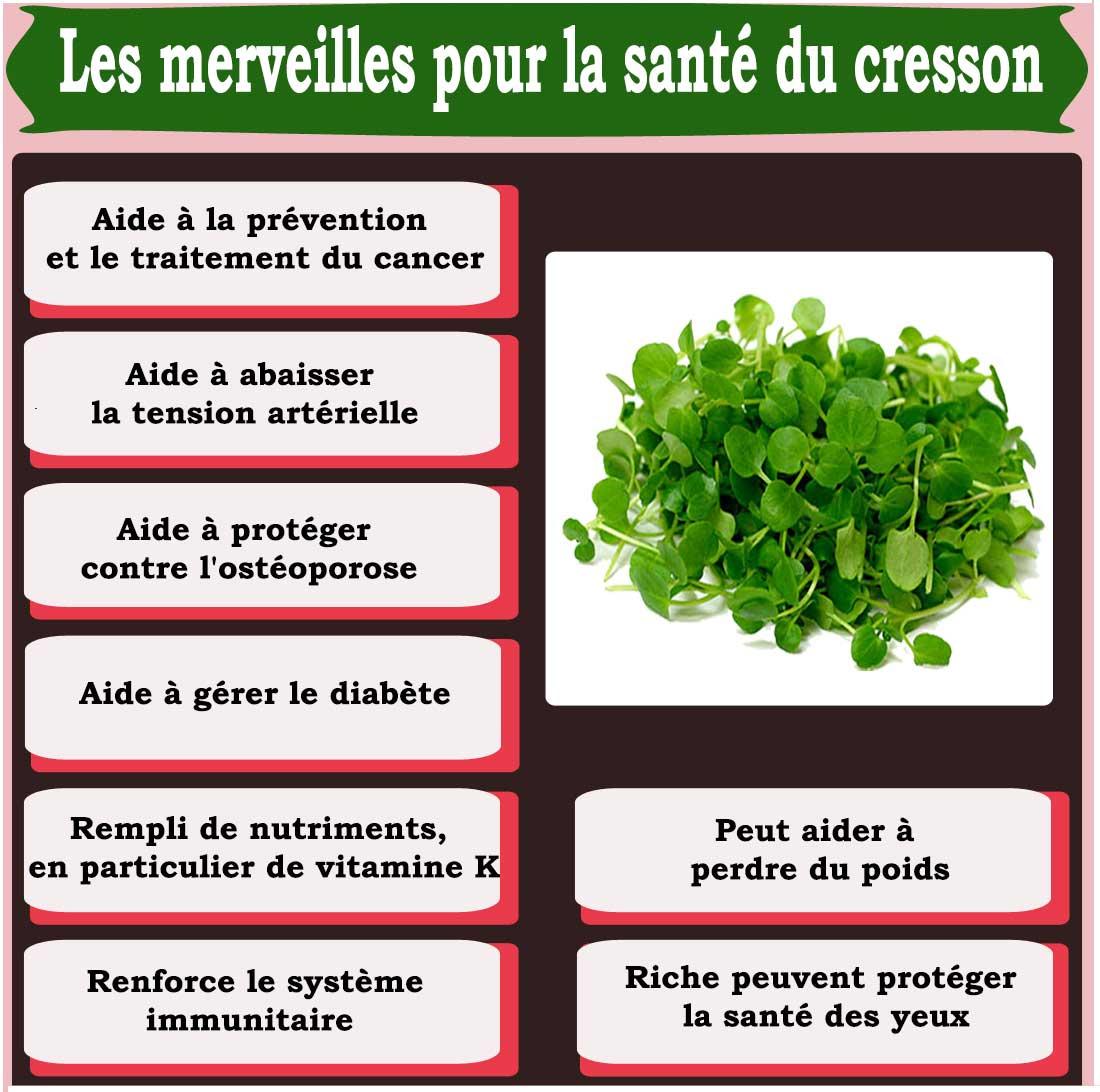 Les merveilles pour la santé du cresson