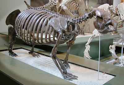 pleistocene mammals