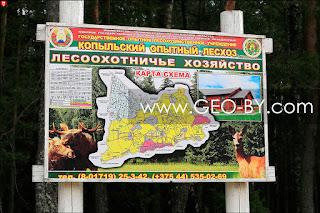 Копыльский лесхоз