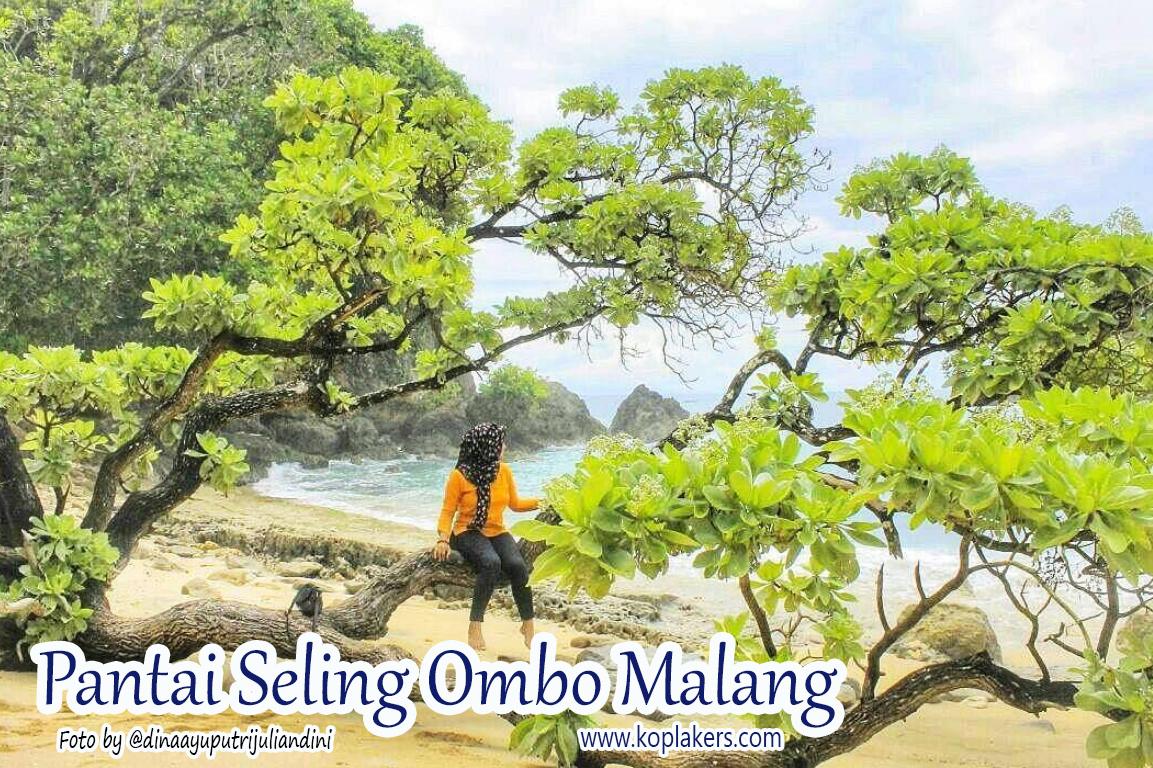Harga tiket masuk dan rute ke pantai seling ombo malang