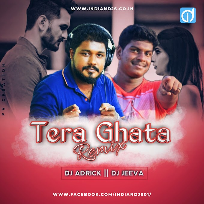 Tera Ghata x We Dont Talk Anymore - Dj Jeeva  Dj Adricks Remix indiandjs
