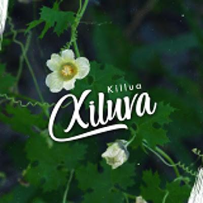 Baixar Musica: Kilua - Xiluva