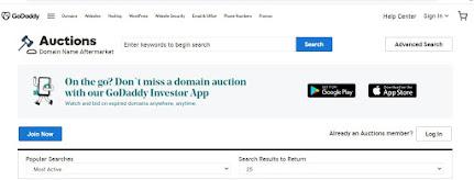 Godaddy Domain Name Register