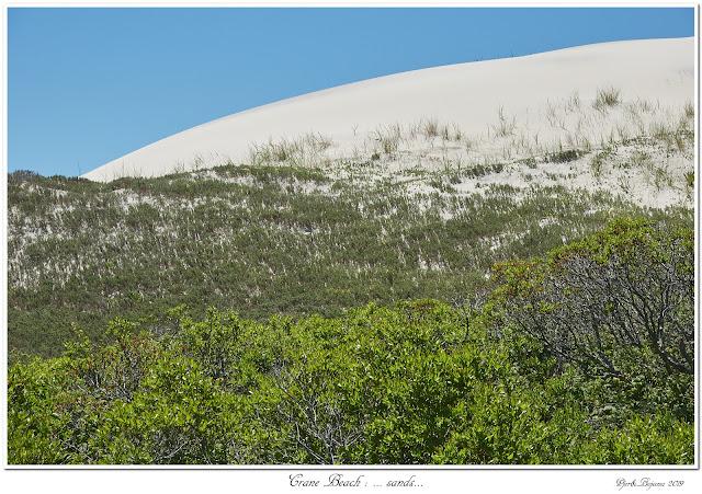 Crane Beach: ... sands...