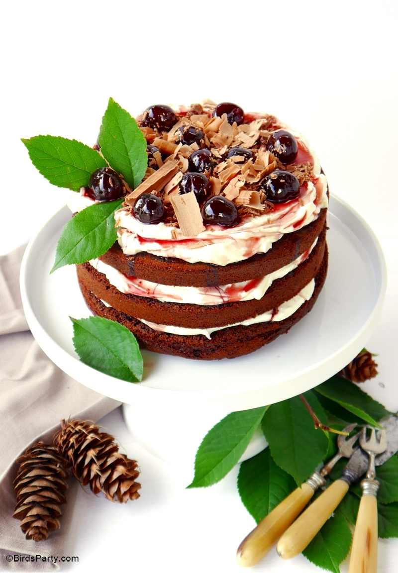 Easy Black Forest Gateau Cake Recipe - BirdsParty.com