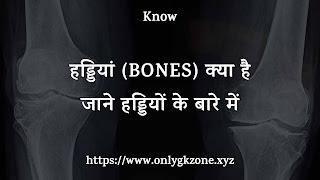 What-Is-Bones