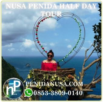 Nusa Penida half day tour