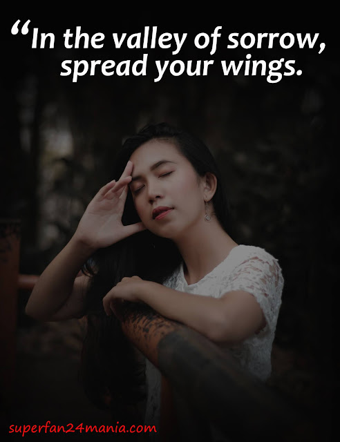 In the valley of sorrow, spread your wings.
