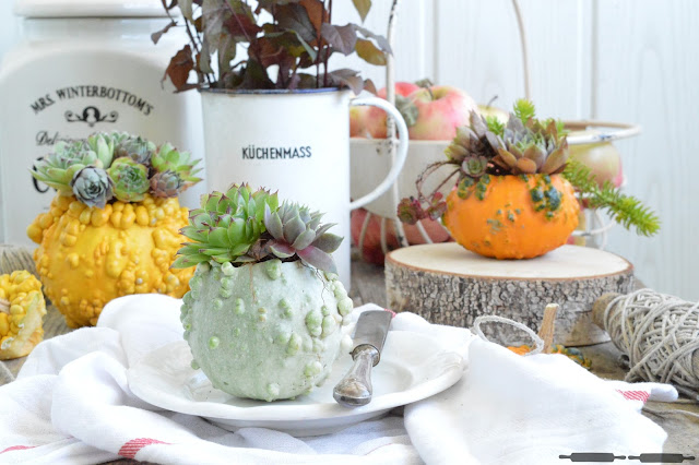 Herbstliche Deko Mit Sukkulenten Sukkulenten In A Pumpkin